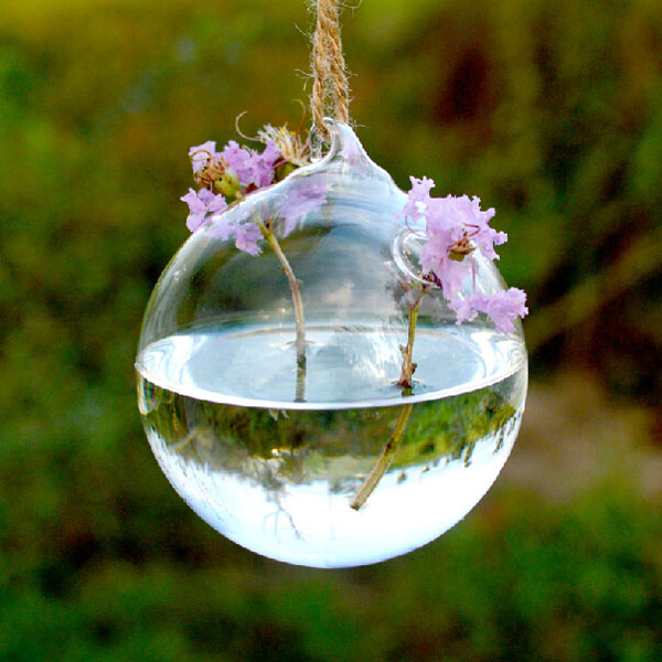 Ball Shape Hanging Glass Vase Hydroponic Plants Flower Container