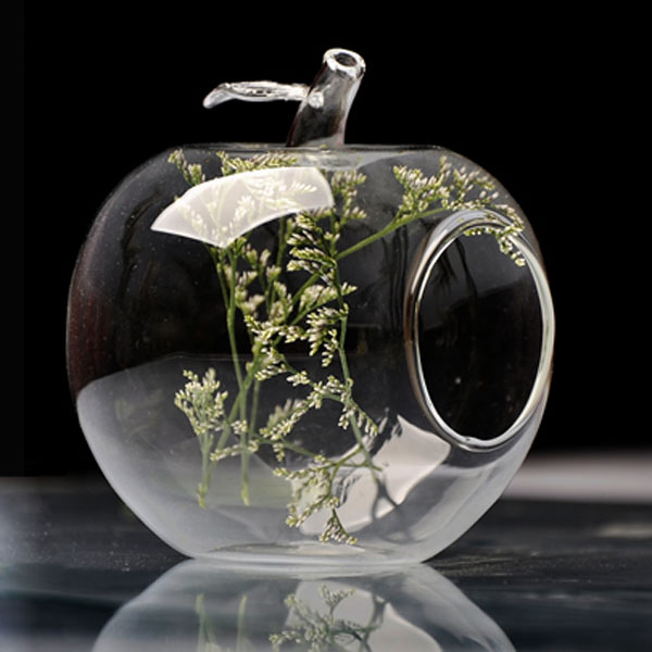 Apple Shape Flower Glass Vase Moss Micro Landscape Eco Bottle